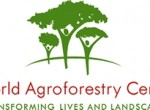 CIMMYT - World Agroforestry Centre ICRAF
